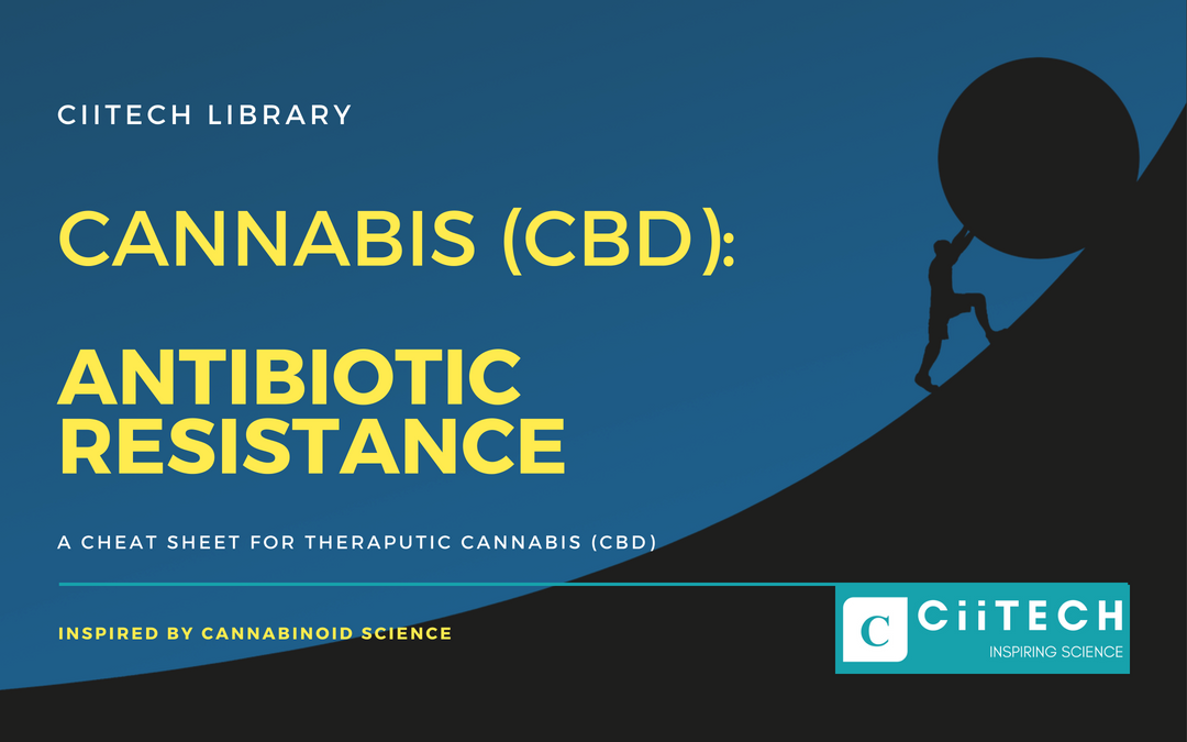 Cannabis Cheat sheet Antibiotic Resistance CBD Cannabis Oil UK